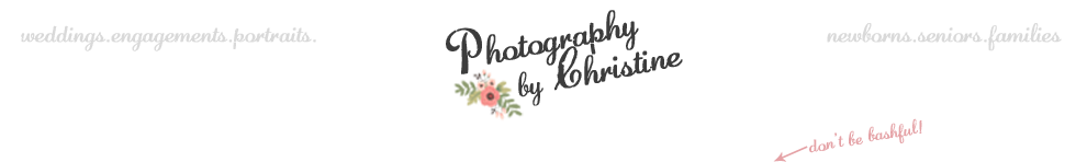 Washington & Oregon Family & Wedding Photographer – senior photographer, portraits, newborn baby logo